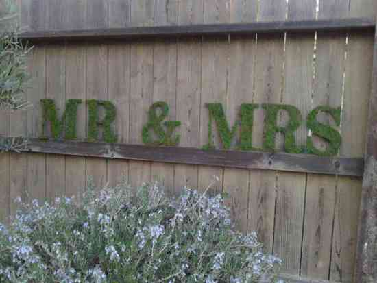 photo of 20 Eco-Chic Moss Wedding Pretties from Etsy
